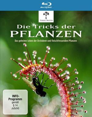 植物的秘密武器海报