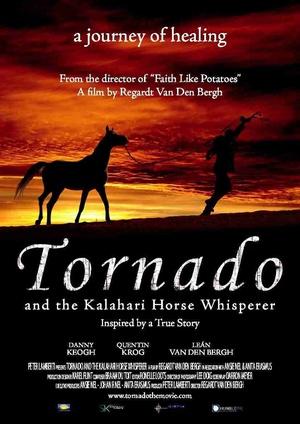 龙卷风和卡拉哈里马语者海报