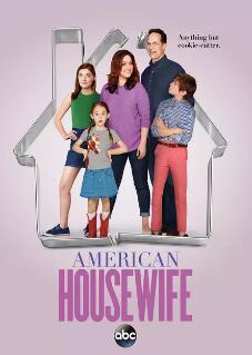 美式主妇第一季海报