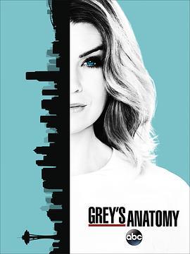 实习医生格蕾第十三季海报