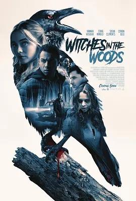 森林中的女巫海报