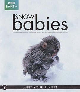 冰上动物宝宝海报