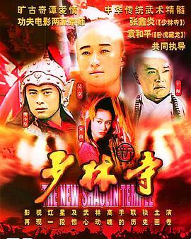 新少林寺1999海报