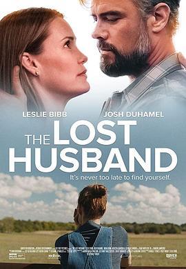 失去的丈夫海报