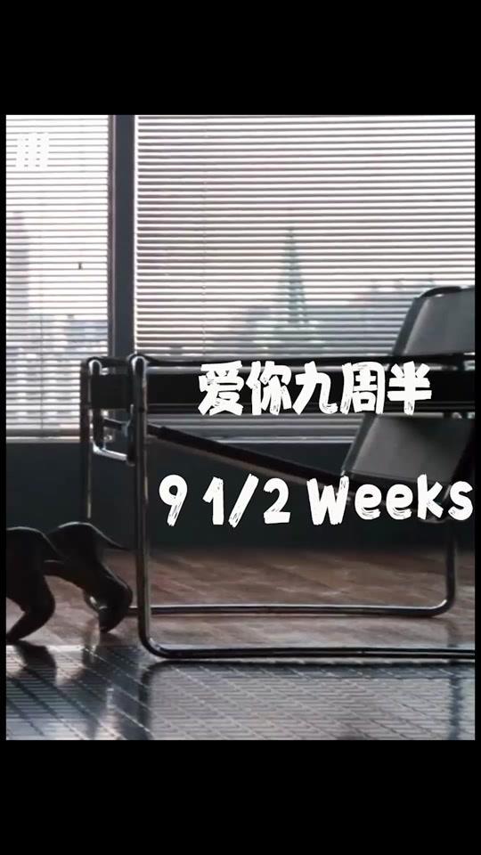 说电影《爱你九周半》海报
