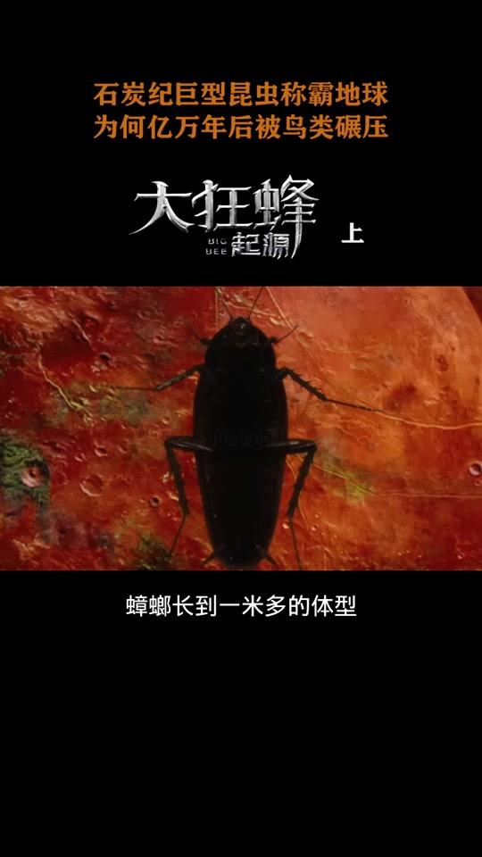 说电影《大狂蜂:起源》海报