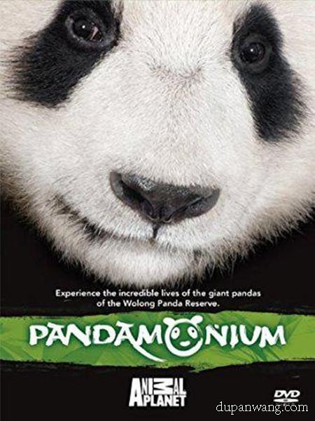 《熊猫总动员》其它片手机在线观看