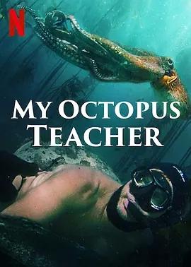 说电影《我的章鱼老师》海报