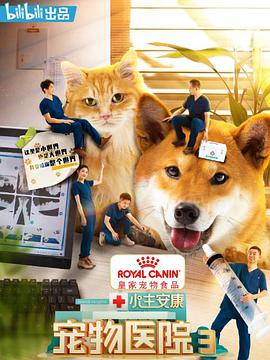 小主安康宠物医院3