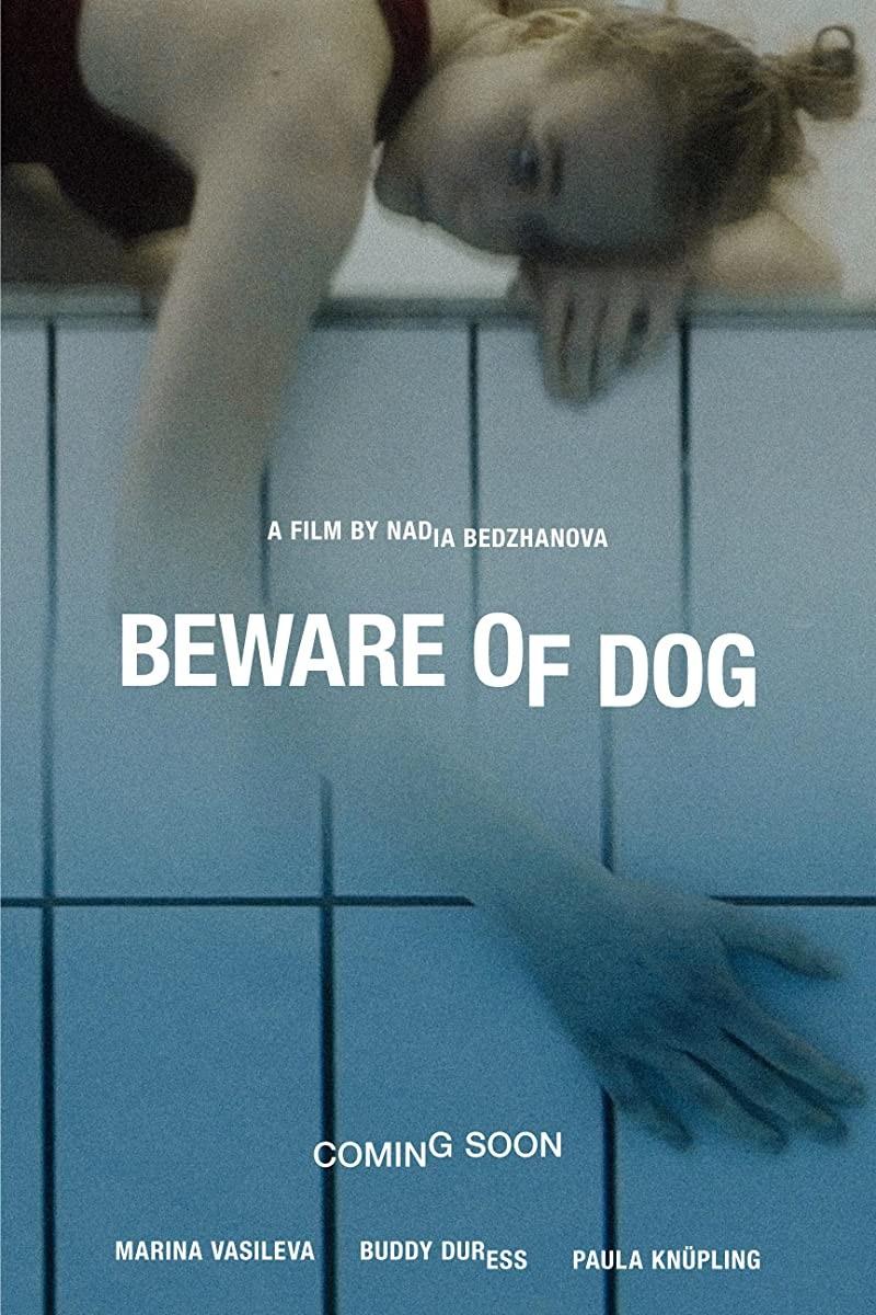 狗一样的人生海报