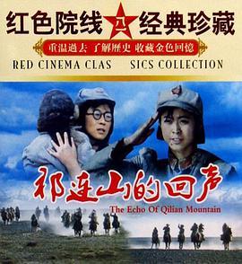 《祁连山的回声》战争片手机在线观看